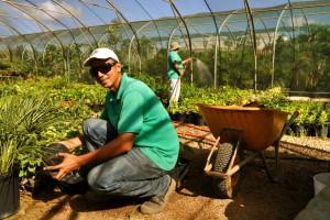 Greenlabel-tuincentrum-Bonaire