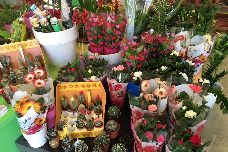 Valentijn bij Green Label